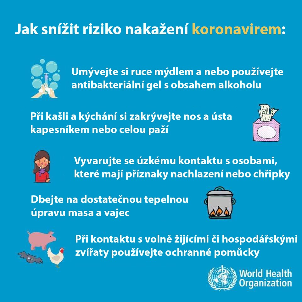 2020_Koronavirus